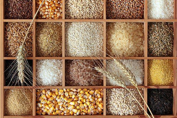 kasze ryż