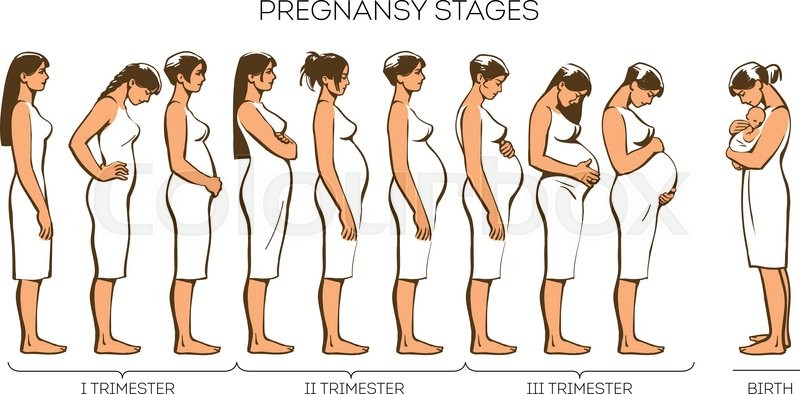 Pregnant Women Stages 55